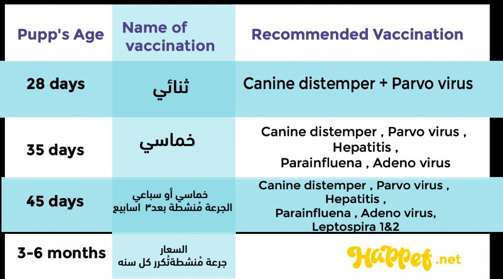 جدول تطعيمات الكلاب