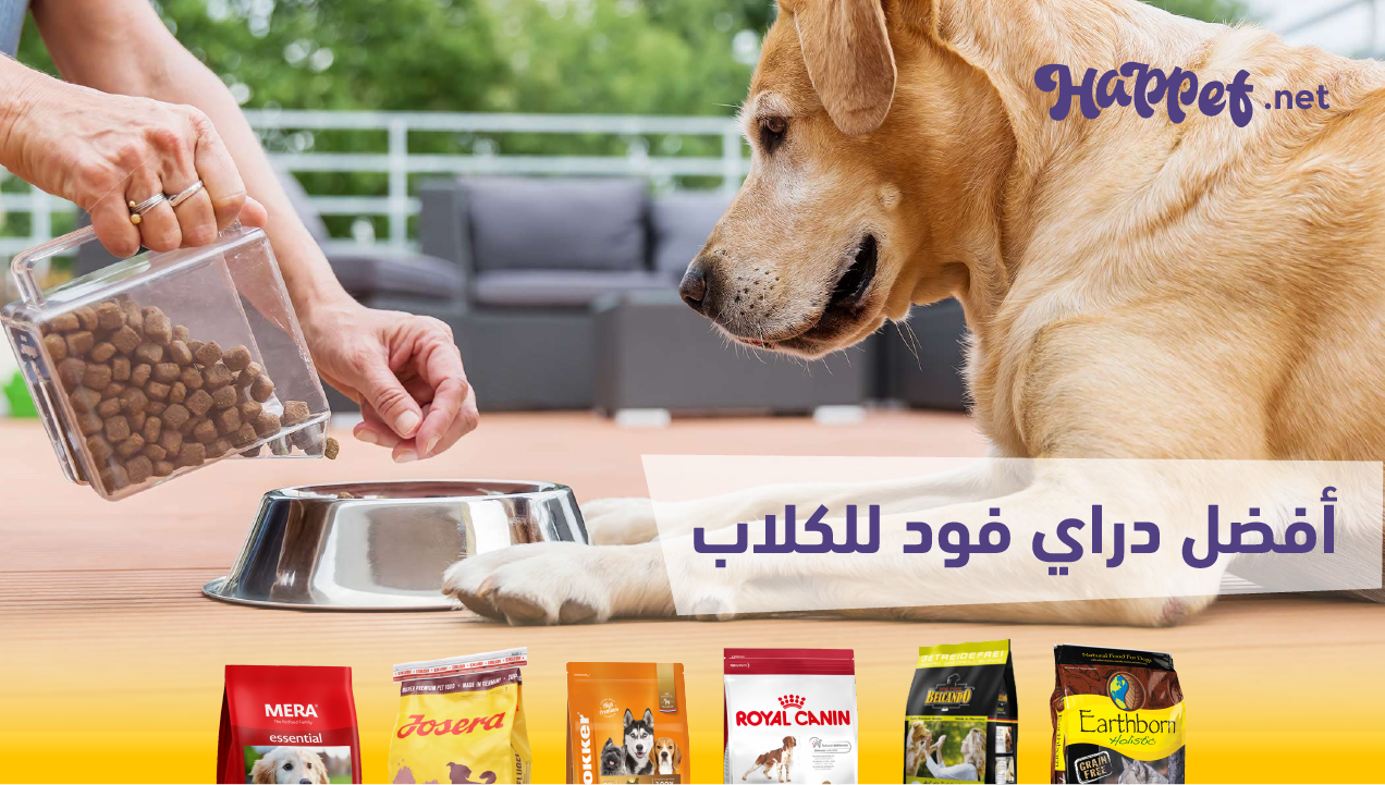 best-dry-food-dogs-egypt