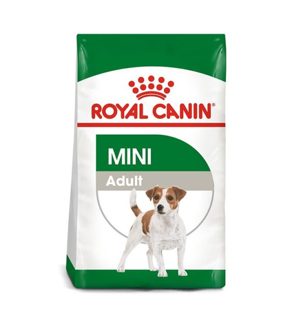 royal-cain-mini-adult