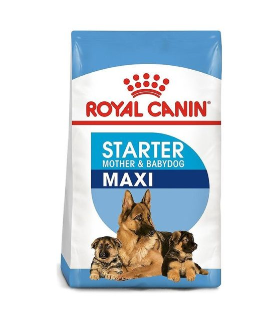 royal-canin-maxi-starter-mother-babies-new