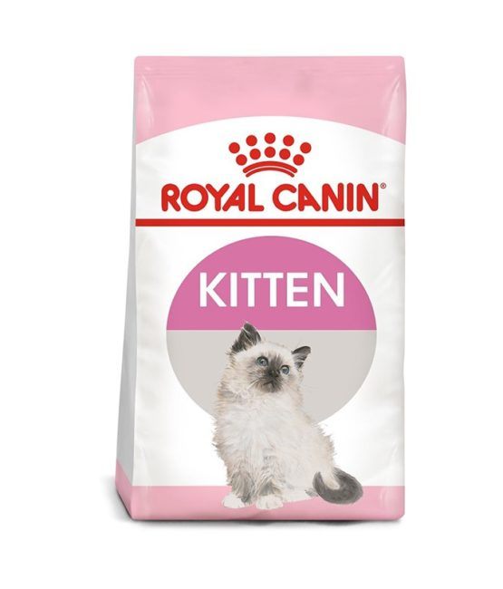 kitten-royal-canin