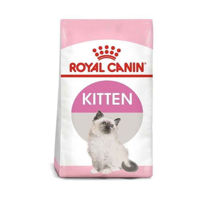 kitten-royal-canin